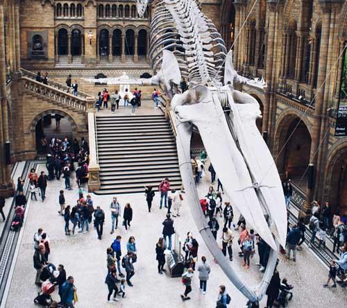 London attraction